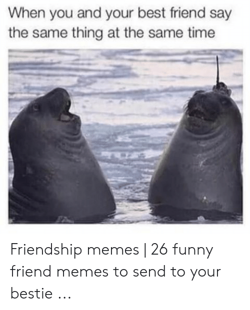 Best Friend, Funny, and Memes: When you and your best friend say  the same thing at the same time Friendship memes | 26 funny friend memes to send to your bestie ...