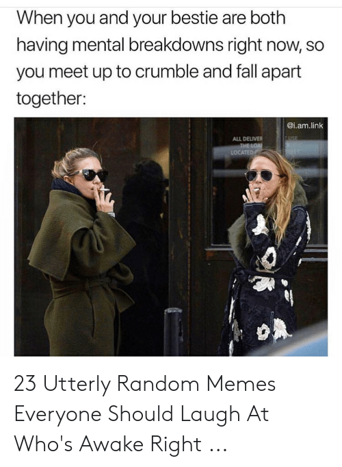 Utterly Random: When you and your bestie are both  having mental breakdowns right now, so  you meet up to crumble and fall apart  together:  @i.am.link  ALL DELIVER 23 Utterly Random Memes Everyone Should Laugh At Who's Awake Right ...
