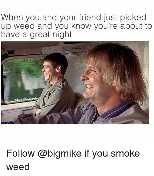 Weed, Trendy, and Friend: When you and your friend just picked  up weed and you know you're about to  have a great night Follow @bigmike if you smoke weed