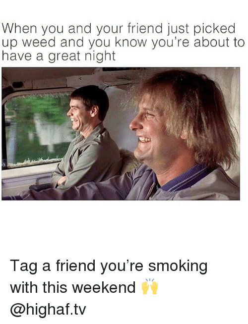 Have A Great Night: When you and your friend just picked  up weed and you know you're about to  have a great night Tag a friend you're smoking with this weekend 🙌 @highaf.tv