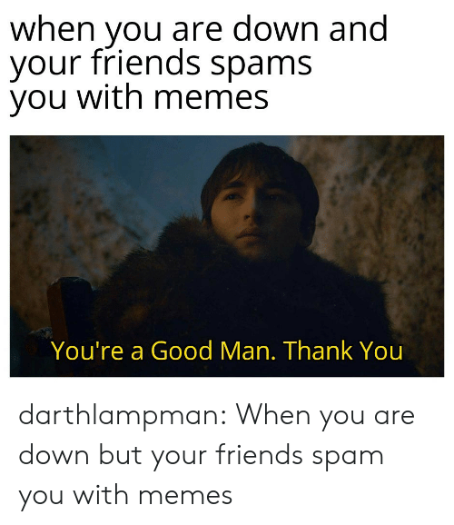 Friends, Memes, and Tumblr: when you are down and  your friends spams  you with memes  You're a Good Man. Thank You darthlampman:  When you are down but your friends spam you with memes