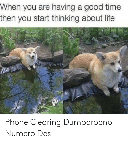 Life, Phone, and Good: When you are having a good time  then you start thinking about life Phone Clearing Dumparoono Numero Dos