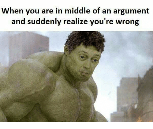 sudden realization: When you are in middle of an argument  and suddenly realize you're wrong
