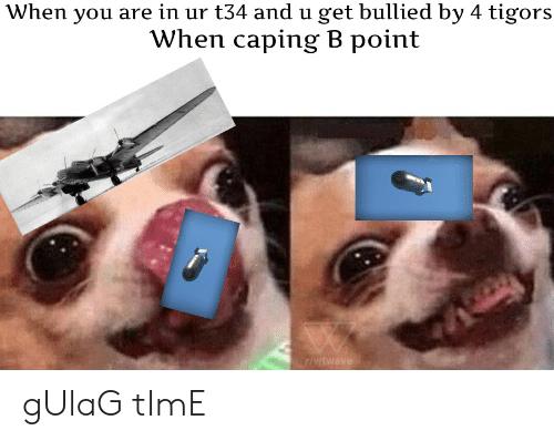 Caping: When you are in ur t34 and u get bullied by 4 tigors  When caping B point  r/ gUlaG tImE