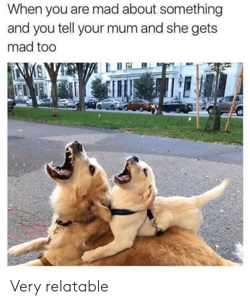 Relatable, Mad, and She: When you are mad about something  and you tell your mum and she gets  mad too Very relatable