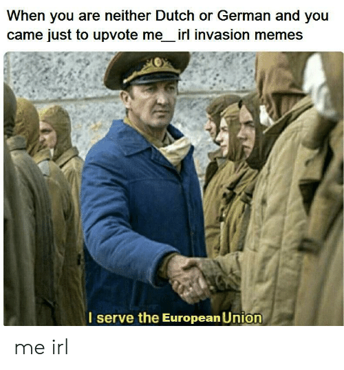Memes, Dutch Language, and European Union: When you are neither Dutch or German and you  came just to upvote me irl invasion memes  serve the European Union me irl