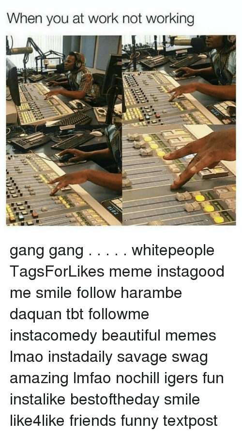 Harambism: When you at work not working gang gang . . . . . whitepeople TagsForLikes meme instagood me smile follow harambe daquan tbt followme instacomedy beautiful memes lmao instadaily savage swag amazing lmfao nochill igers fun instalike bestoftheday smile like4like friends funny textpost