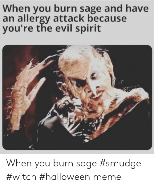 Sage: When you burn sage and have  an allergy attack because  you're the evil spirit When you burn sage #smudge #witch #halloween meme