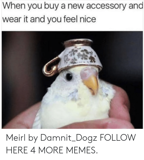 Dank, Memes, and Target: When you buy a new accessory and  wear it and you feel nice Meirl by Damnit_Dogz FOLLOW HERE 4 MORE MEMES.