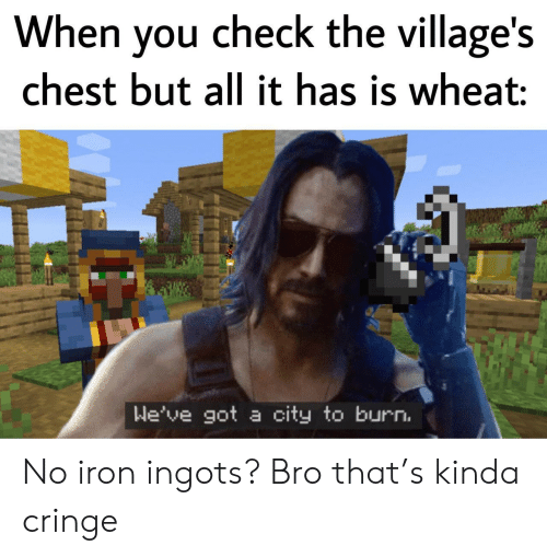Got, Iron, and Wheat: When you check the village's  chest but all it has is wheat:  We've got a city to burn. No iron ingots? Bro that's kinda cringe