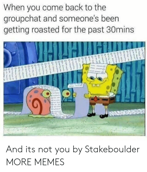 Groupchat: When you come back to the  groupchat and someone's beern  getting roasted for the past 30mins And its not you by Stakeboulder MORE MEMES