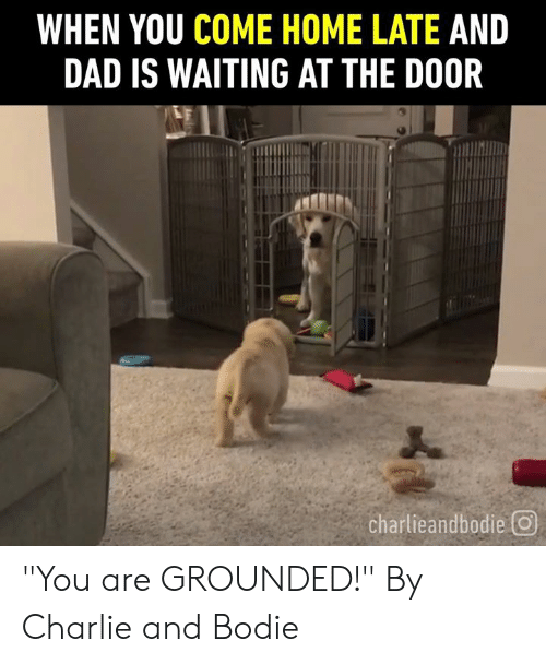 "grounded: WHEN YOU COME HOME LATE AND  DAD IS WAITING AT THE DOOR  charlieandbodie回 ""You are GROUNDED!""  By Charlie and Bodie"