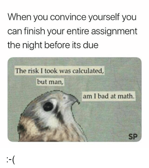 But Man Am I Bad At Math: When you convince yourself you  can finish your entire assignment  the night before its due  The risk I took was calculated  but man,  am I bad at math  SP :-(