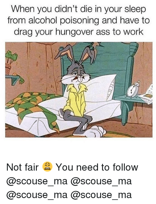 alcohol poisoning: When you didn't die in your sleep  from alcohol poisoning and have to  drag your hungover ass to work Not fair 😩 You need to follow @scouse_ma @scouse_ma @scouse_ma @scouse_ma