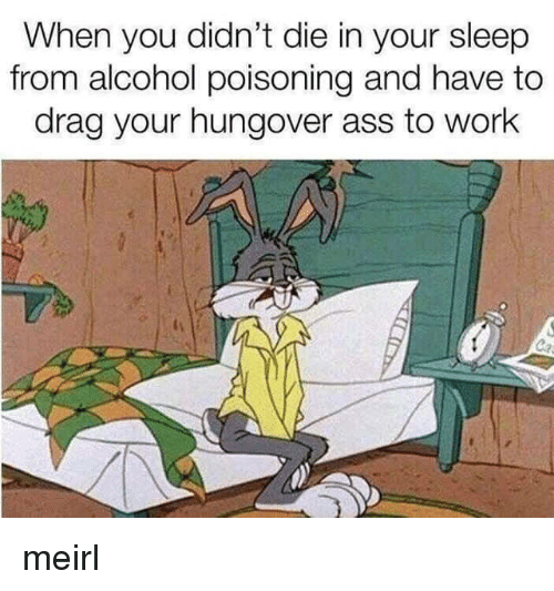 alcohol poisoning: When you didn't die in your sleep  from alcohol poisoning and have to  drag your hungover ass to work meirl