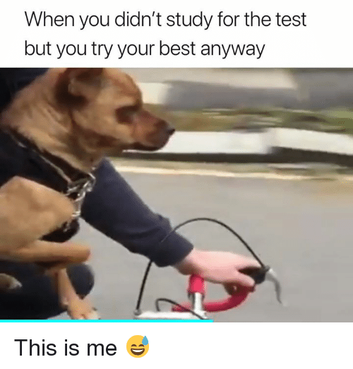 Best, Test, and You: When you didn't study for the test  but you try your best anyway This is me 😅