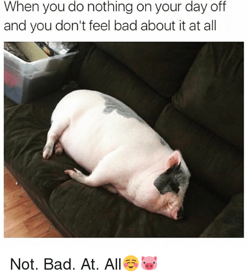 Bad, Funny, and Day: When you do nothing on your day off  and you don't feel bad about it at all Not. Bad. At. All☺️🐷