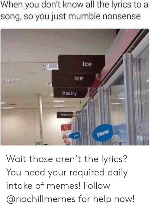 Memes, Help, and Lyrics: When you don't know all the lyrics to a  song, so you just mumble nonsense  Ice  LUTALOB  Ice  Pastry  Vegetarian  New Wait those aren't the lyrics?  You need your required daily intake of memes! Follow @nochillmemes for help now!