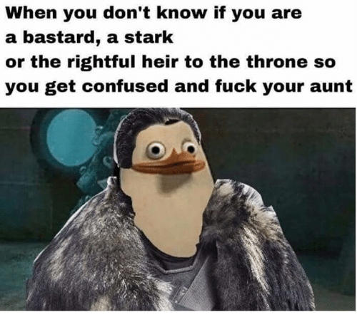 Bastardization: When you don't know if you are  a bastard, a stark  or the rightful heir to the throne so  you get confused and fuck your aunt