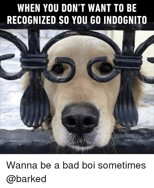 Bad, Memes, and 🤖: WHEN YOU DON'T WANT TO BE  RECOGNIZED SO YOU GO INDOGNITO Wanna be a bad boi sometimes @barked
