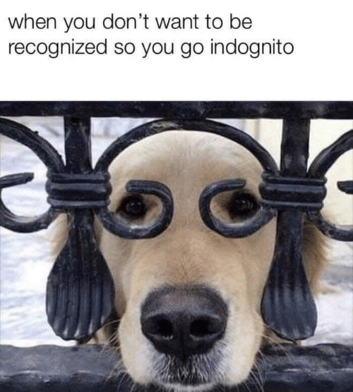 You, When You, and  Want: when you don't want to be  recognized so you go indognito