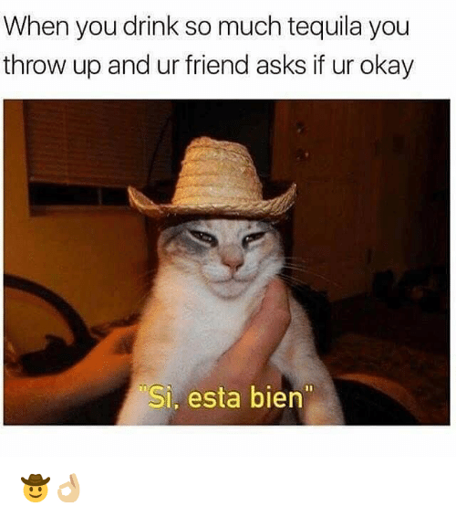 """Okay, Tequila, and Dank Memes: When you drink so much tequila you  throw up and ur friend asks if ur okay  Si, esta bien"""" 🤠👌🏼"""