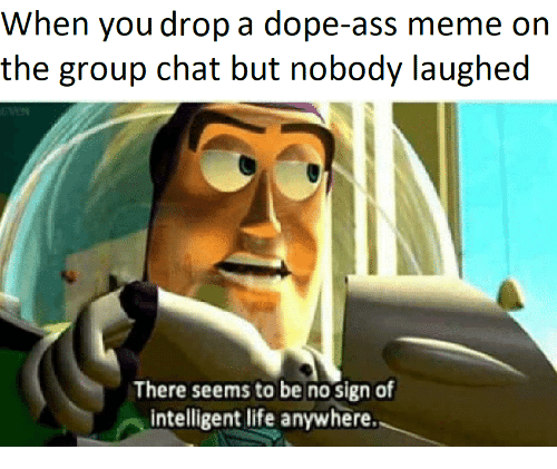 Intelligent Life: When you drop a dope-ass meme on  the group chat but nobody laughed  There seems to be no sign of  intelligent life anywhere.