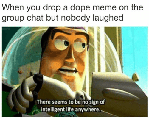 Intelligent Life: When you drop a dope meme on the  group chat but nobody laughed  There seems to be no sign of  intelligent life anywhere