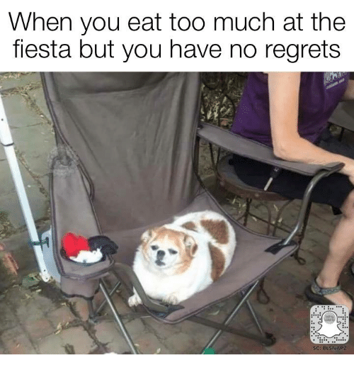 Memes, Too Much, and 🤖: When you eat too much at the  fiesta but you have no regrets