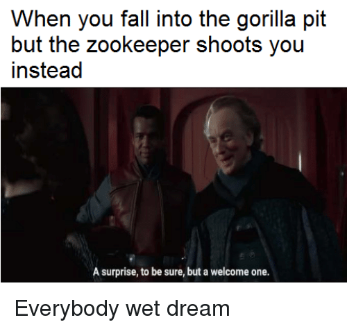 wet dream: When you fall into the gorilla pit  but the zookeeper shoots you  instead  A surprise, to be sure, but a welcome one.   Everybody wet dream