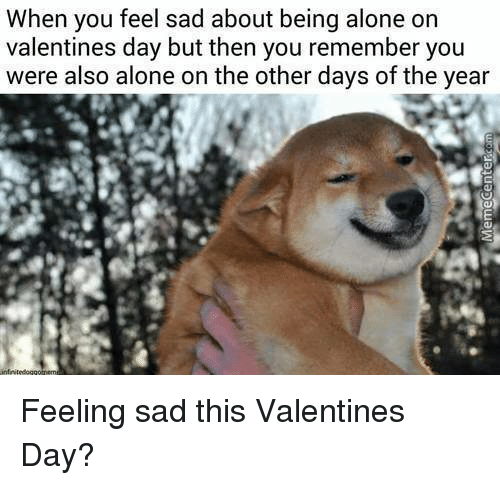 Alone On Valentines Day: When you feel sad about being alone on  valentines day but then you remember you  were also alone on the other days of the year Feeling sad this Valentines Day?