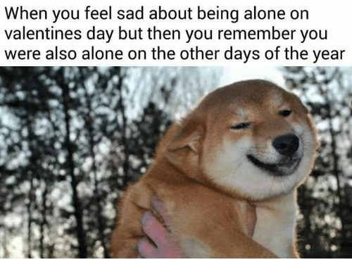 Alone On Valentines Day: When you feel sad about being alone on  valentines day but then you remember you  were also alone on the other days of the year