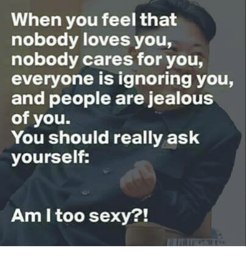 nobody love: When you feel that  nobody loves you,  nobody cares for you,  everyone is ignoring you,  and people are jealous  of you.  You should really ask  yourself:  Am I too sexy?!