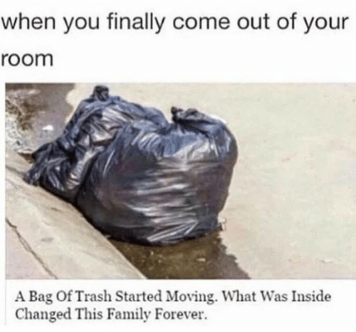 Family, Trash, and Forever: when you finally come out of your  room  A Bag Of Trash Started Moving. What Was Inside  Changed This Family Forever.
