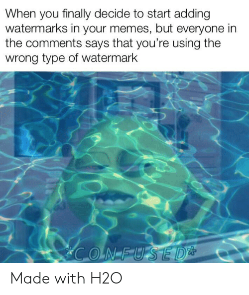 Your Memes: When you finally decide to start adding  watermarks in your memes, but everyone in  the comments says that you're using the  wrong type of watermark Made with H2O