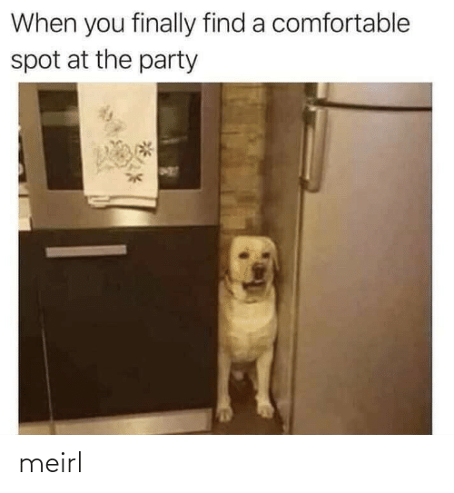 comfortable: When you finally find a comfortable  spot at the party meirl