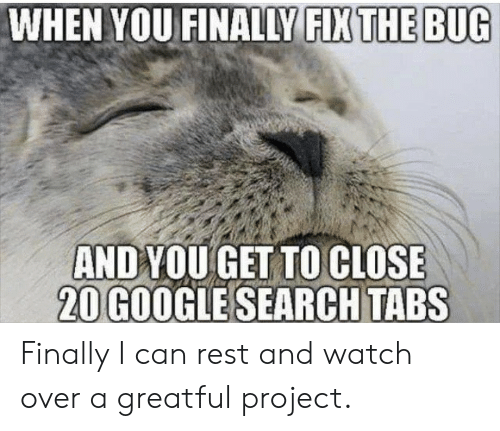 Tabs: WHEN YOU FINALLY FIX THE BUG  ANDYOU GET TO CLOSE  20 GOOGLE SEARCH TABS Finally I can rest and watch over a greatful project.