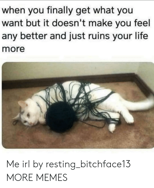 Dank, Life, and Memes: when you finally get what you  want but it doesn't make you feel  any better and just ruins your life  more Me irl by resting_bitchface13 MORE MEMES