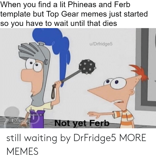 Dank, Lit, and Memes: When you find a lit Phineas and Ferb  template but Top Gear memes just started  so you have to wait until that dies  u/Drfridge5  41  Not yet Ferb still waiting by DrFridge5 MORE MEMES