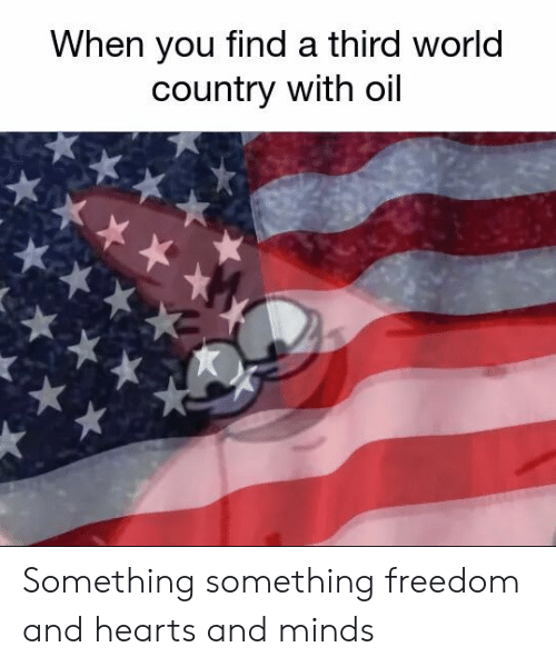 Something Something: When you find a third world  country with oil Something something freedom and hearts and minds