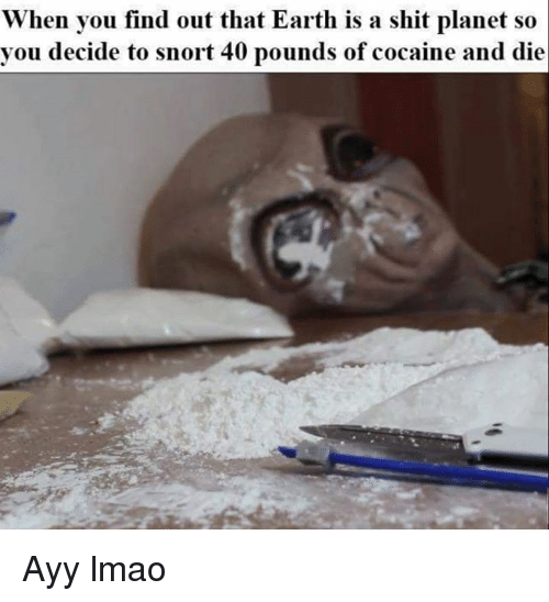 Cocaines: When you find out that Earth is a shit planet so  you decide to snort 40 pounds of cocaine and die Ayy lmao