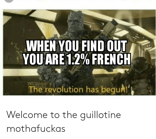 Begum: WHEN YOU FIND OUT  YOU ARE 12% FRENCH  The revolution has begum!' Welcome to the guillotine mothafuckas