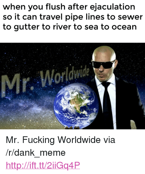 "mr worldwide: when you flush after ejaculation  so it can travel pipe lines to sewer  to gutter to river to sea to ocean  Mr, Worldwide <p>Mr. Fucking Worldwide via /r/dank_meme <a href=""http://ift.tt/2iiGq4P"">http://ift.tt/2iiGq4P</a></p>"