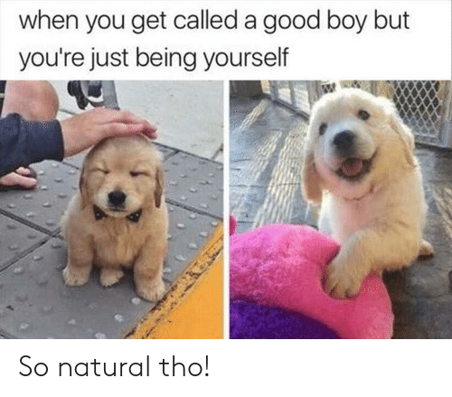 Good, Boy, and You: when you get called a good boy but  you're just being yourself So natural tho!