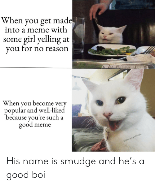 Meme, Girl, and Good: When you get made.  into a meme with  girl yelling  you for no reason  some  at  When you become very  popular and well-liked  because you're such a  good  meme  u?TheGempio Vulpin His name is smudge and he's a good boi