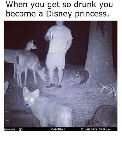 Princess: When you get so drunk you  become a Disney princess.  02 JAN 2019 09:26 pm  CAMERA 1  MOULTR .
