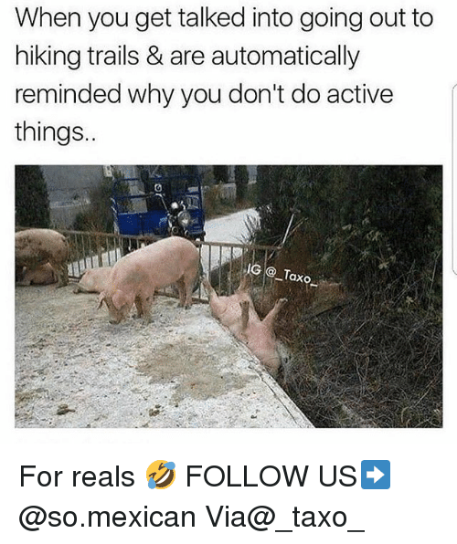 For Reals: When you get talked into going out to  hiking trails & are automatically  reminded why you don't do active  things.  IG Taxo For reals 🤣 FOLLOW US➡️ @so.mexican Via@_taxo_
