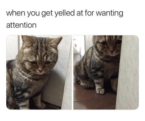 You, For, and Get: when you get yelled at for wanting  attention