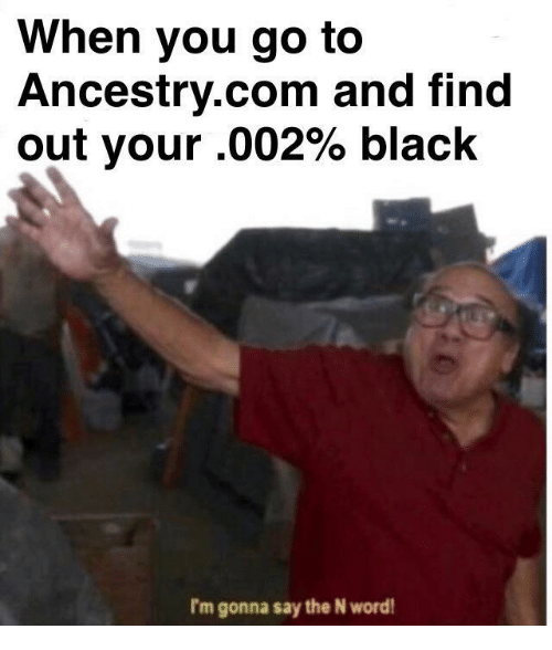 Ancestry, Black, and Word: When you go to  Ancestry.com and find  out your .002% black  I'm gonna say the N word