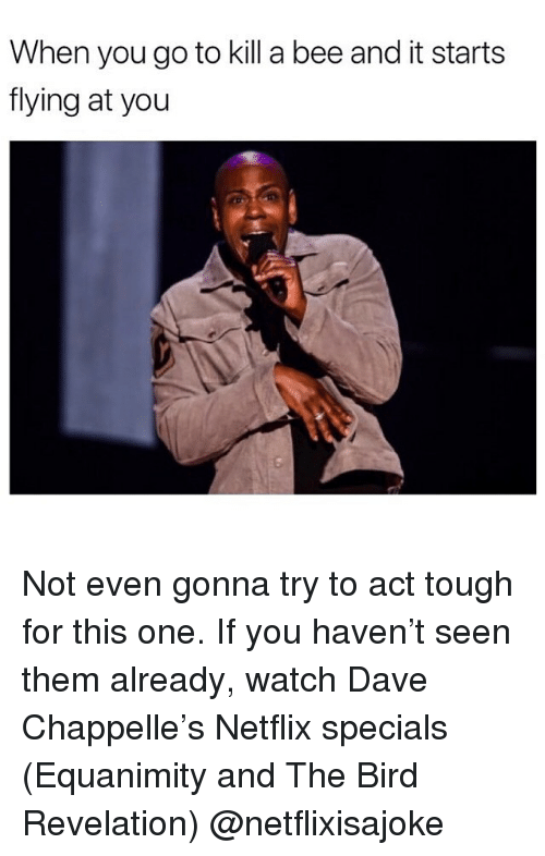 Dave Chappelle: When you go to kill a bee and it starts  flying at you Not even gonna try to act tough for this one. If you haven't seen them already, watch Dave Chappelle's Netflix specials (Equanimity and The Bird Revelation) @netflixisajoke